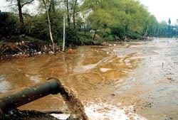 Brudna rzeka